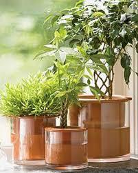 25 trending self watering pots ideas on pinterest diy self