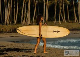 surfing dominican republic free surf spot information for surfing
