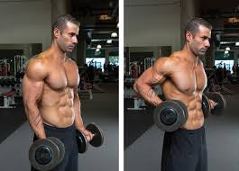 exploring the best exercises for building thick biceps