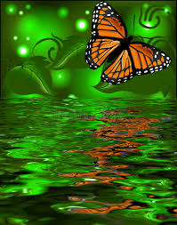 reflection of a butterfly in the water on glowing back stock