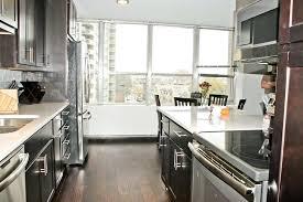 Modern Condo Kitchen Design Condo Kitchen Sinsa Info