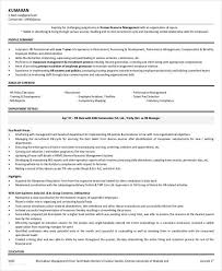 Mis Profile Resume Professional Manager Resume 49 Free Word Pdf Documents