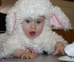 Halloween Sheep Costume Lamb Costume