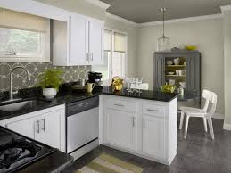 Painted Kitchen Cupboard Ideas Cabinet Cool How To Paint Kitchen Cabinets White How To Refinish