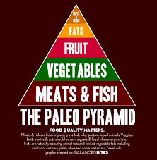 iifym vs paleo diet the differences and can they be combined