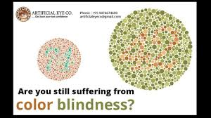 Yellow Red Color Blindness Ishihara Test Plates Do Your Own Test Now And Check Are You Red