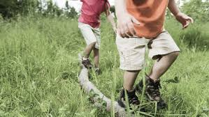 activities to improve gross motor skills in kids dyspraxia