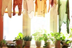 11 simple eco friendly ways to save money going green