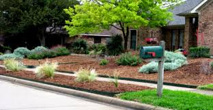 Landscaping Ideas For Low Maintenance Garden Home Design San Diego - Home design san diego
