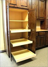 pull out cabinet organizer costco pull out cabinet organizer large size of out shelves for pantry