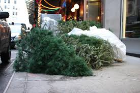christmas christmas tree brooklyn free delivery anywhere in new