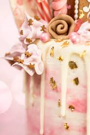 pink gingerbread dream house drip cake by veronica arthur