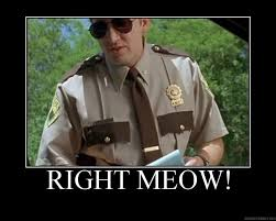 Super Troopers Meme - super troopers quotes trooper memes pinterest super troopers