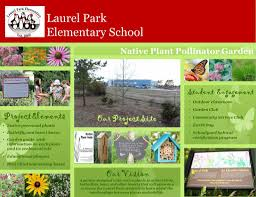 native plant guide laurel park elementary native plant pollinator garden cornell