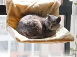 new arrival super soft pet cat sleeping bed multifunction pet