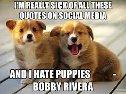 Sick Puppy Meme - i m really sick of all these quotes on social media and i hate