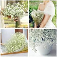 silk baby s breath baby s breath silk flower gypsophila artificial plant home