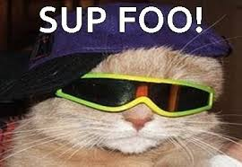 Cool Cat Meme - cool cat meme on imgfave