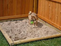 backyard ideas for dogs backyard ideas for dogs that dig backyard and yard design for village