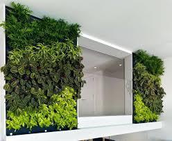 indoor vertical garden ideas indoor vertical garden indoor
