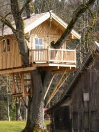 Treehouse Cleveland - home improvement building a tree house