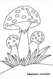 group fungi colouring mushrooms toadstools