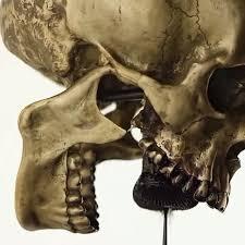 Skull Viewer Killing Time Electromagnetic Ferrofluid Sculpture By Mesplé