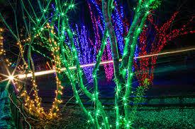 christmas picture birmingham
