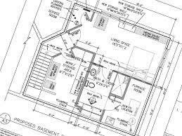 Basement Bathroom Floor Plans Bright U0026 Bold Basement Bathroom Go Home Design U0026 Decor