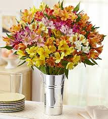 Free Vase Flowers Assorted Peruvian Lilies 100 Blooms Free Vase With