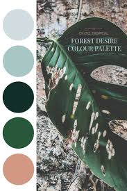 best 25 forest bedroom ideas on pinterest wall murals bedroom forest desire palette oh so tropical could use this palette for the blog