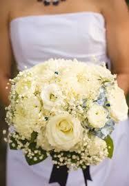 denver florists david juliet garden roses posh petals ltd denver