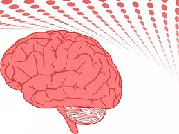 templates for powerpoint brain human brain ppt backgrounds health medical templates ppt grounds