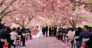 Outdoor Wedding Venues Chicago Best Brooklyn Botanical Garden Wedding Brooklyn Botanical Garden