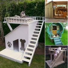 Bunk Bed For Dogs Dog Bunk Beds Best Ideas Easy Video Instructions Dog Houses Dog