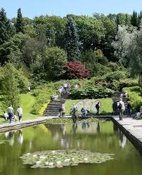 Bambus Garten Design Göteborgs Botanischer Garten U2013 Wikipedia