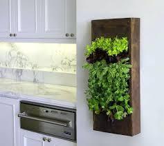 Indoor Hanging Garden Ideas Indoor Vertical Garden Ideas Cityofhope Co
