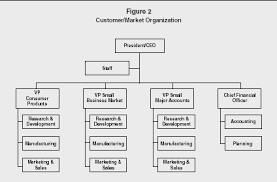organizational structure strategy levels examples advantages