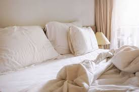 Mattress Cover Bed Bugs Do Vinyl Mattress Covers Protect Against Bed Bugs