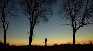 silhouette man carrying woman surrounded with tall trees hd