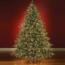 artificial pre lit led fraser fir trees amazing