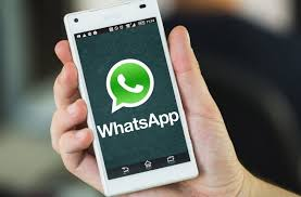 whatsapp free for android whatsapp business app now in india free for android users technogot