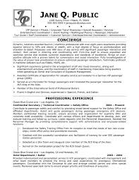 Spanish Interpreter Resume Sample by Top 25 Best Basic Resume Examples Ideas On Pinterest Resume