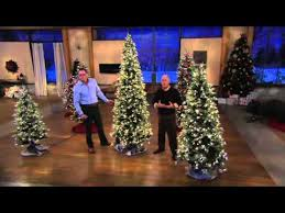 bethlehem lights slim blue spruce tree on qvc