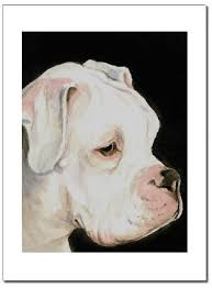 boxers dogbreed gifts boxer prints paintings posters