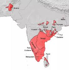 what is the real origin of the dravidians are only tamils