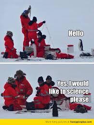 Cute Penguin Meme - cute penguin meme funny pictures
