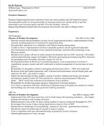 Sample Resume Executive Summary by Chief Technology Officer Free Resume Samples Blue Sky Resumes