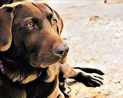 art glass dog ring holder images Custom pet portrait etsy jpg