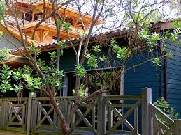chambre hote bassin arcachon yamina lodge chambres d hôtes lège cap ferret